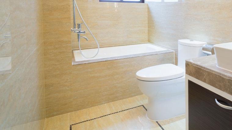 Toilet Installation Phoenix